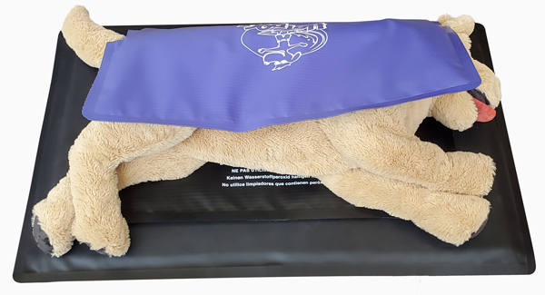 Veterinary Patient Warming Pressure Reduction Pad with Dog